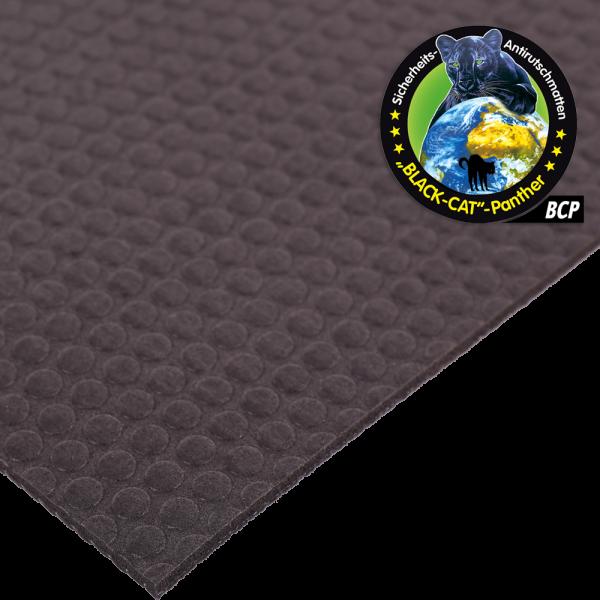 Black-Cat-Panther Oberfläche